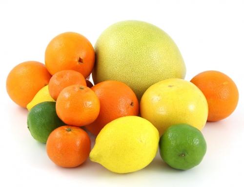 פירות הדר